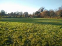 Beverley-Farm