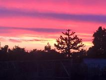 Bosham-Sunset2