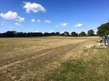 Leylands-Farm-Lymington2